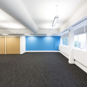 blue feature wall in office
